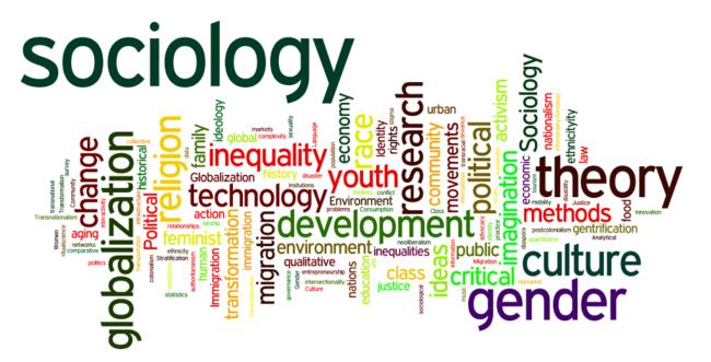 Социолог-2